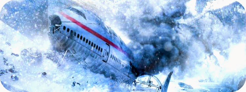 Image result for airplane disaster movies